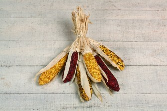 Mixed Indian Corn Bunch,G2252